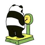 痩せたいのに痩せない理由はコレ!痩せられない理由を知って確実なダイエットをしよう!
