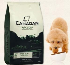 愛犬のドッグフードは安全で無添加な物がおすすめ!安心安全な無添加ドッグフードを紹介します♪